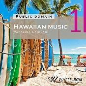 <名曲>ハワイアンミュージック1 -Papalina Lahilahi-(4019)