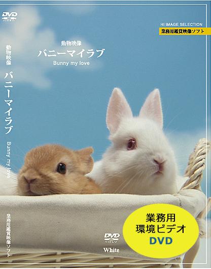 業務用鑑賞映像「バニーマイラブ」DVD版