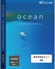 業務用鑑賞映像「ocean -The beautiful sea around Okinawa-」 4K版